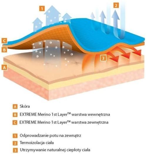 Opis działania systemu comfort - infografika