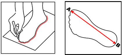 Wymiary buta - infografika