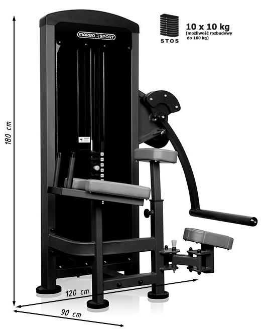 Maszyna na mięśnie pośladkowe MP-U222 marki Marbo - wymiary | sportowybazar.pl