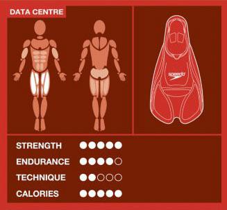 Płetwy treningowe Biofuse Training Fin marki Speedo - infografika